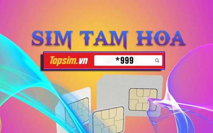 Sim Tam Hoa 9 2